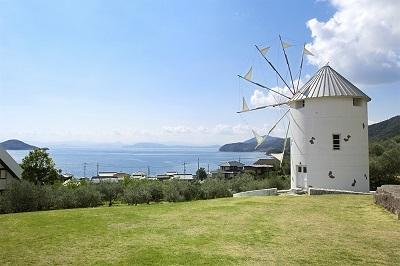 olive-park